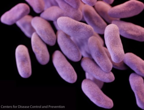 Deadly superbug just got scarier – it can mysteriously thwart last-resort drug