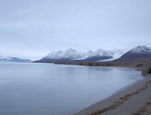 Genes linked to antibiotic-resistant superbugs found in Arctic